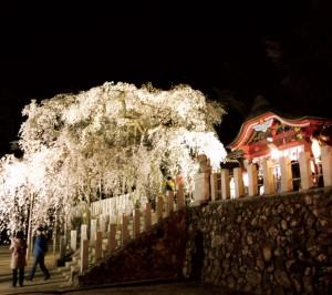 小川諏訪神社1